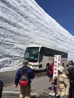 これが雪の大谷.jpg